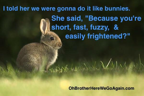 Like Bunnies!